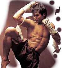 Tony Jaa Body